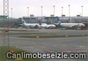 Hilton Kopenhagen Airport live canli Danimarka