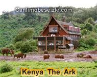 The Ark canli izle