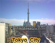 Tokyo City Live Webcam