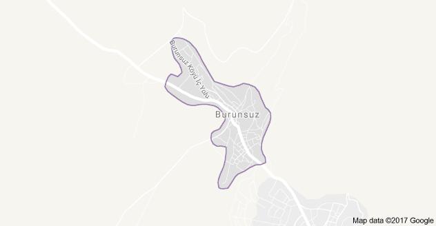 Hüyük Burunsuz Uydu Görüntüsü