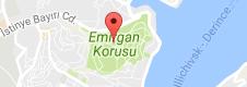 Emirgan Korusu Uydu Görüntüsü, Harita