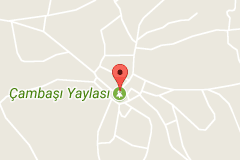 Ordu Çambaşı Yaylası Uydu Görüntüsü Harita