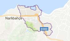 Balçova Uydu Görüntüsü Uydu Haritası İzmir