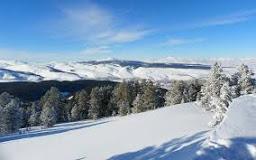 Kars Sarıkamış Allahuekber Dağları Uydu Görüntüsü