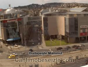 Budapeşte Mammut Alışveriş Merkezi canli izle