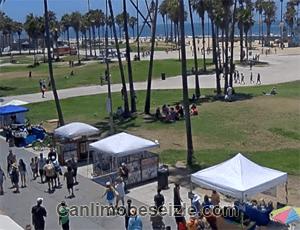 California Venedik Plajı mobese canli izle