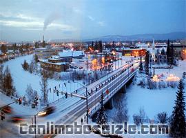 Fairbanks Alaska canli mobese izle