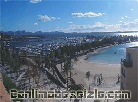 Mallorca Alcudia canli izle