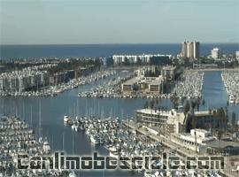 Marina del Rey canli mobese izle