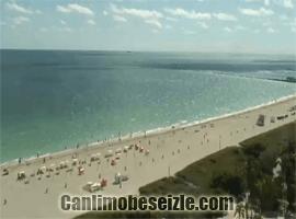 Miami Plajı canli izle