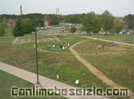 Northern Michigan University canli izle