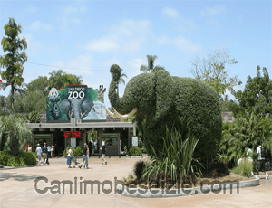 San Diego Hayvanat Bahçesi canli izle