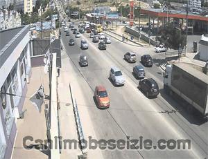 Sevastopol Kampüs Yolu canli izle