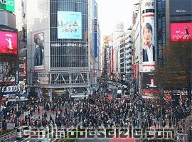 Japonya Shibuya canli izle