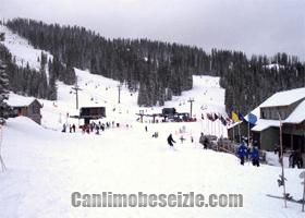 Wolf Creek Ski canli mobese izle