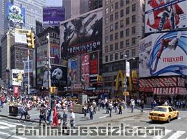New York Times 42 Cadde canli izle