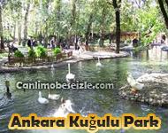 Ankara Kuğulu Park canli izle