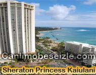 Hawaii Adaları live canlı mobese izle