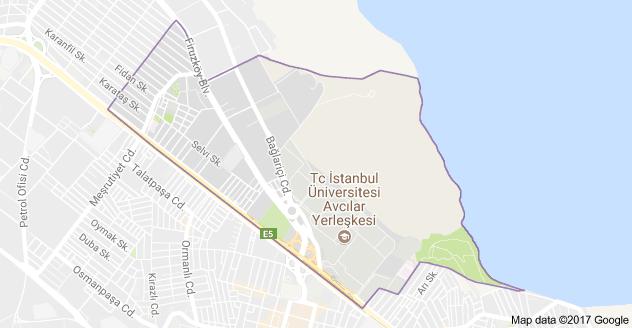 Üniversite Mahallesi Uydu Görüntüsü ve Haritası Avcılar