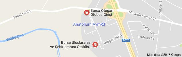 Bursa Otogarı Uydu Görüntüsü