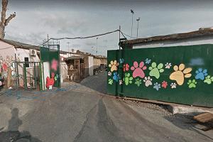 İstanbul Fatih Belediyesi Yedikule Hayvan Barınağı Nerede Nasıl Gidilir, Yol Tarifi
