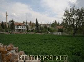 Alagöz Köyü Temelli Sincan canli izle